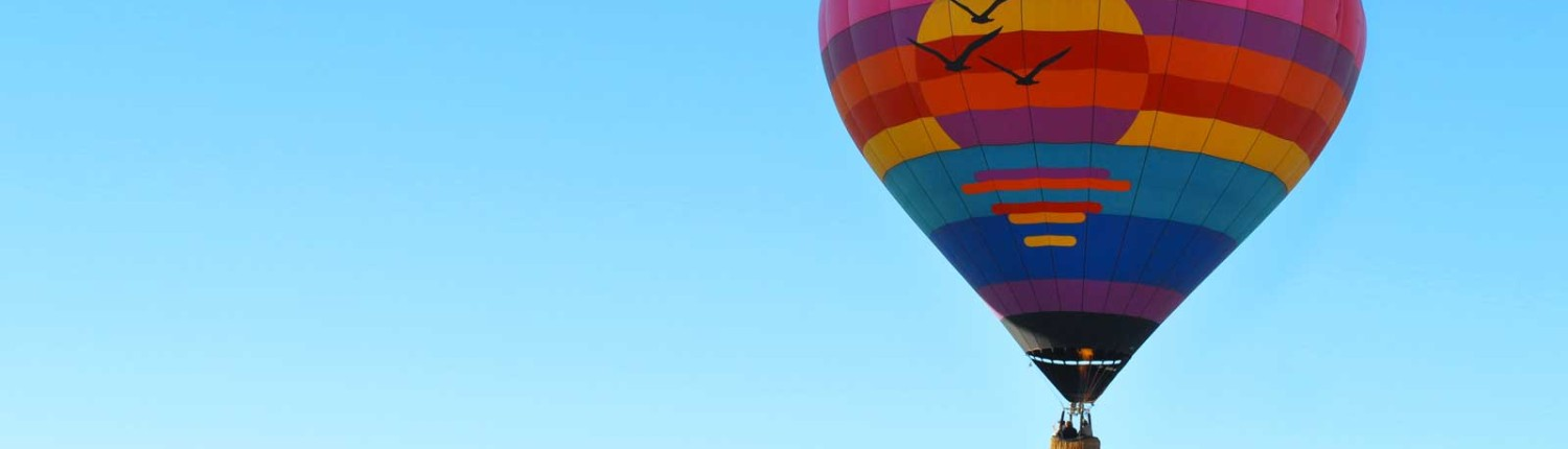 Firebird hot Air Balloon Rides in Arizona, US